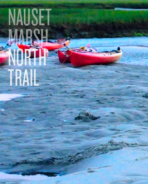 Nauset Marsh - North Trail